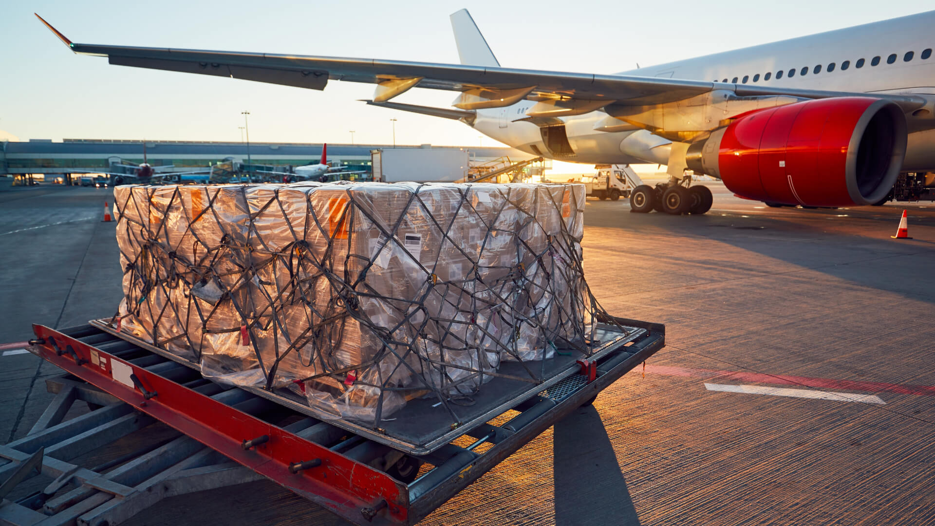 De Rijke Logistics - Cargo Flight.jpg